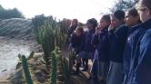 Aprendiendo los biomas del mundo