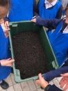 Compost_2