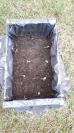 Compost_6