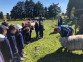 Dia de granja_9